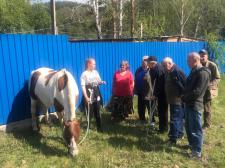 Посещение конного клуба «Каприоль»